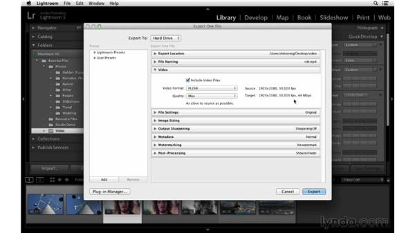 Exporting to a hard drive: Lightroom 5 Essentials: 02 Managing Images with the Library Module