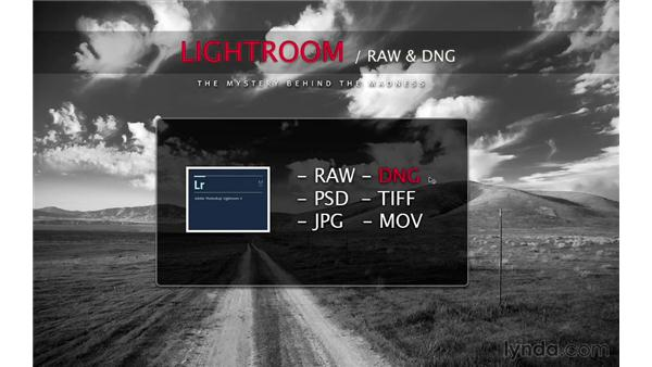Why use DNG?: Lightroom 5 Essentials: 02 Managing Images with the Library Module