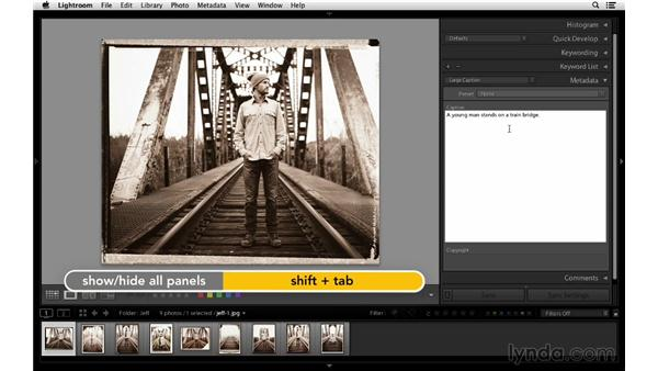 Working with the Metadata panel: Lightroom 5 Essentials: 02 Managing Images with the Library Module