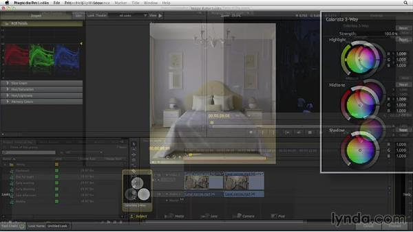Welcome: The Art of Color Correction: Color Grading for Locations and Times of Day
