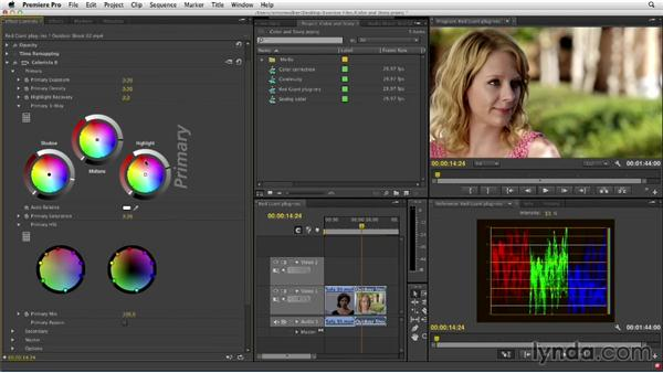 Working with Premiere Pro and the Colorista II plugin: The Art of Color Correction: Color Grading for Locations and Times of Day