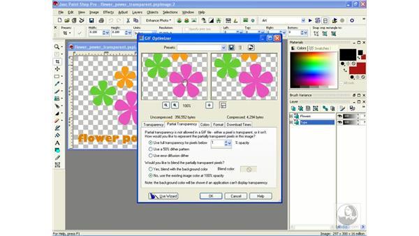 optimizing transparent GIFs: Learning Jasc Paint Shop Power Suite Photo Edition