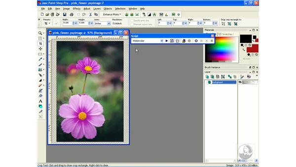 playing scripts: Learning Jasc Paint Shop Power Suite Photo Edition