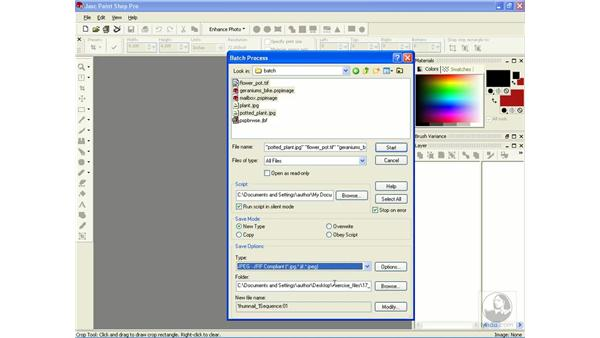 batch processing files: Learning Jasc Paint Shop Power Suite Photo Edition