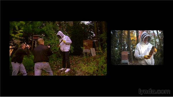 The photo shoot: Lighting with Flash: Portrait of a Beekeeper and His Bees