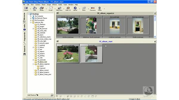 working with albums: Learning Jasc Paint Shop Power Suite Photo Edition