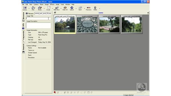 adding info to albums: Learning Jasc Paint Shop Power Suite Photo Edition