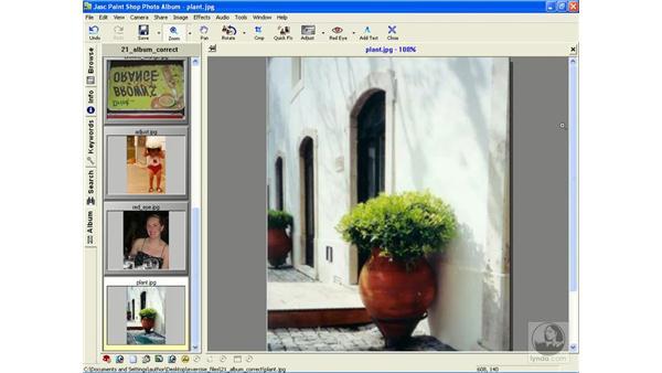 resizing images: Learning Jasc Paint Shop Power Suite Photo Edition