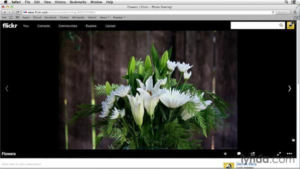 Enabling online editing: Flickr Essential Training