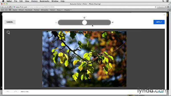 Working with Enhance, Brightness, and Saturation: Flickr Essential Training