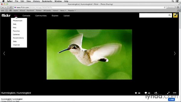 Creating a gallery: Flickr Essential Training