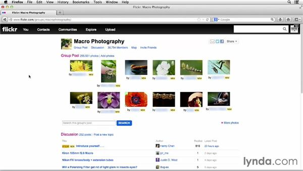 Joining and contributing to a group: Flickr Essential Training