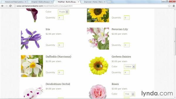 Using Build-a-Bouquet (version 1): Applied Interaction Design
