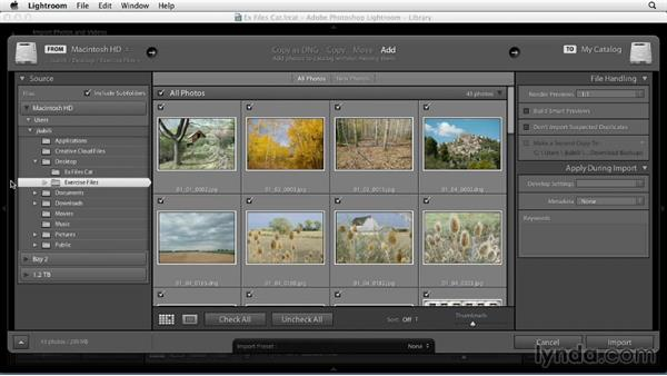Using the exercise files: Using Presets in Lightroom