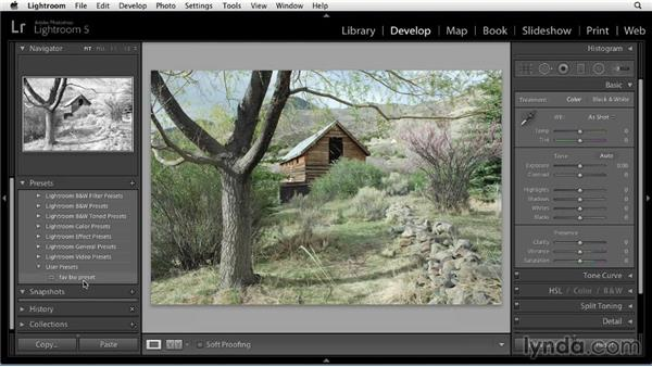 What is a Develop preset?: Using Presets in Lightroom