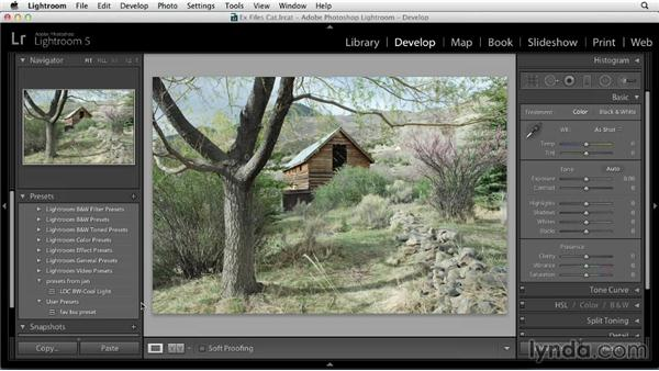 Installing Develop presets made by others: Using Presets in Lightroom