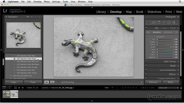 Layering multiple Develop presets on a photo: Using Presets in Lightroom
