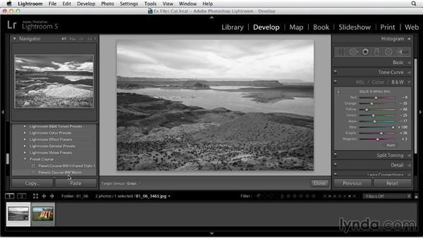 Updating Develop presets: Using Presets in Lightroom