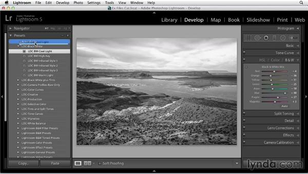 Organizing your Develop presets: Using Presets in Lightroom