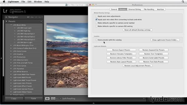 Choosing where to store your Develop presets: Using Presets in Lightroom