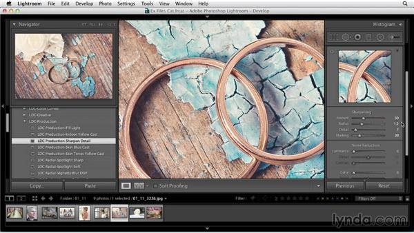 Develop preset production examples: Using Presets in Lightroom