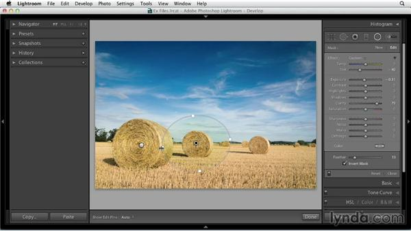 Applying a local adjustment preset with multiple tools: Using Presets in Lightroom
