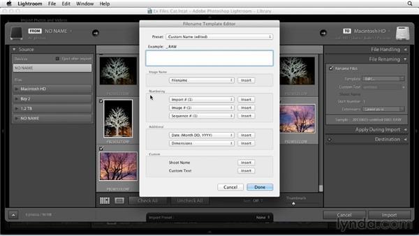 Making file-naming presets: Using Presets in Lightroom