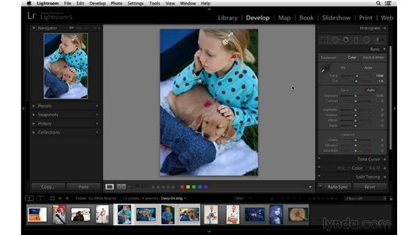 Using the White Balance menu: Lightroom 5 Essentials: 03 Develop Module Basics