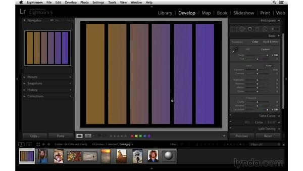 Understanding vibrance and saturation: Lightroom 5 Essentials: 03 Develop Module Basics