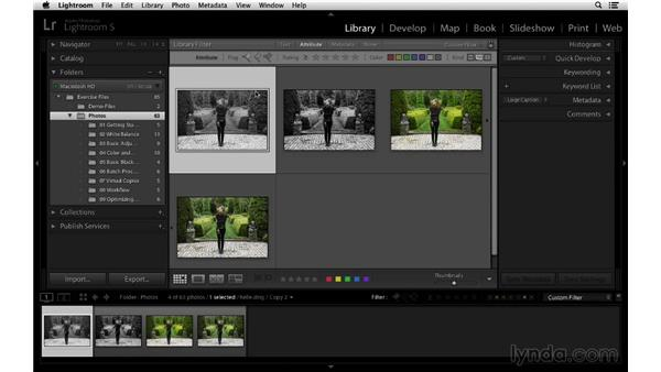 Filtering, finding, and deleting virtual copies: Lightroom 5 Essentials: 03 Develop Module Basics