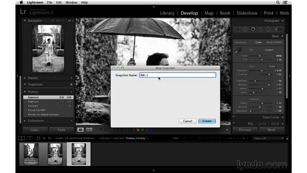 Using Snapshots and History: Lightroom 5 Essentials: 03 Develop Module Basics