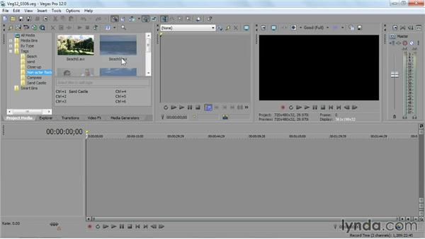 Managing files in the Project Media panel: Sony Vegas Pro Essential Training