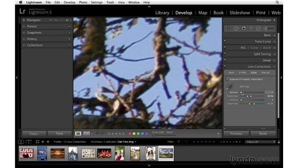 Quick and easy color fringing removal: Lightroom 5 Essentials: 04 Develop Module Advanced Techniques