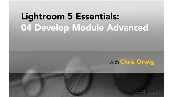 Next steps: Lightroom 5 Essentials: 04 Develop Module Advanced Techniques