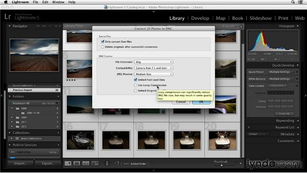 Converting to DNG (and why you'll love it): Working with Raw-Format Photos in Lightroom 5 and Photoshop CC (2013)