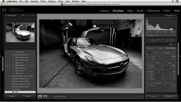 Working with image presets: Working with Raw-Format Photos in Lightroom 5 and Photoshop CC (2013)