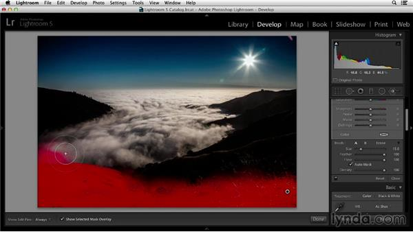 Making selective edits: Working with Raw-Format Photos in Lightroom 5 and Photoshop CC (2013)