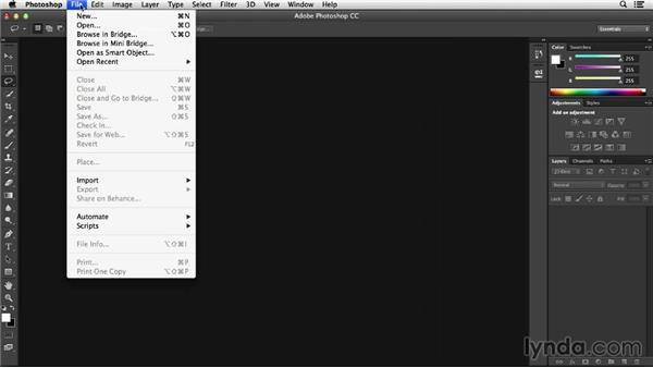 Opening files in Adobe Camera Raw: Working with Raw-Format Photos in Lightroom 5 and Photoshop CC (2013)