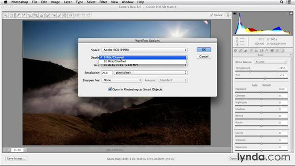 Optimizing your workflow: Working with Raw-Format Photos in Lightroom 5 and Photoshop CC (2013)