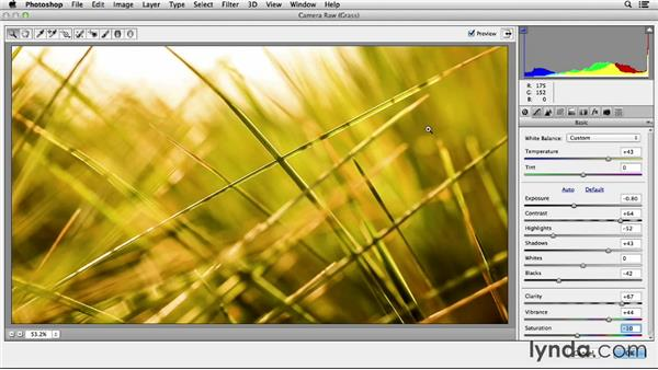 Using Adobe Camera Raw with video: Working with Raw-Format Photos in Lightroom 5 and Photoshop CC (2013)