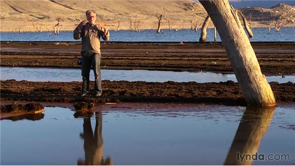 Working with reflections : The Practicing Photographer