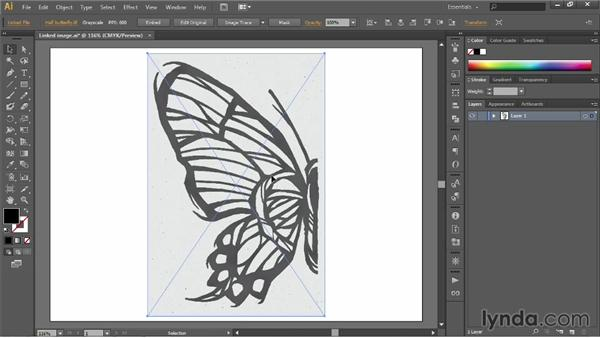 Autotracing and resolution: Illustrator CC 2013 One-on-One: Fundamentals
