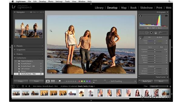 Creating web gallery collections: Lightroom 5 Essentials: 06 Creating Slideshows and Web Galleries