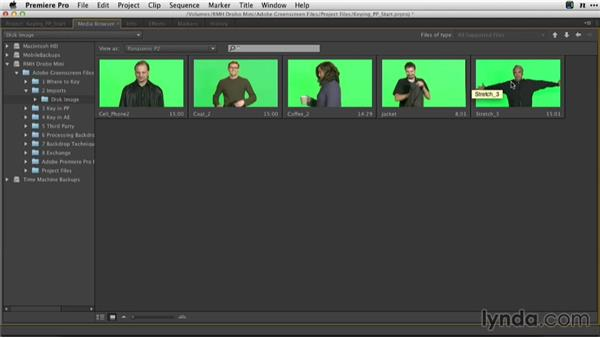 Importing into Adobe Premiere Pro with the Media Browser: Adobe Green-Screen Workflow
