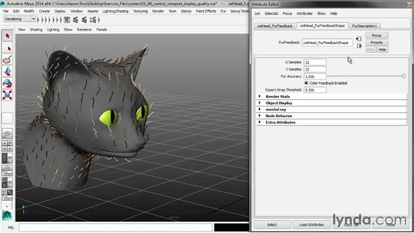 Controlling viewport display quality: Creating Fur in Maya