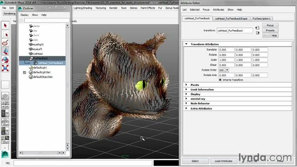 Examining the Fur node structure: Creating Fur in Maya