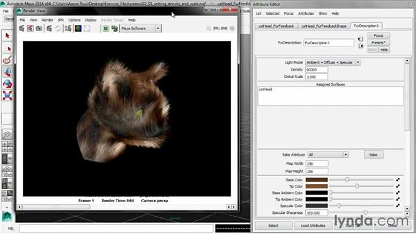 Setting density and scale: Creating Fur in Maya