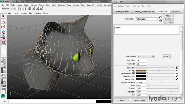 Refining details per attribute: Creating Fur in Maya