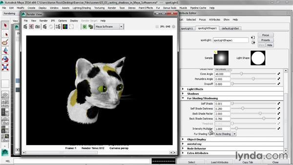 Casting shadows in Maya software: Creating Fur in Maya