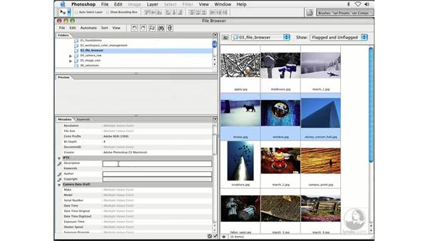 adding meta-data: Enhancing Digital Photography with Photoshop CS